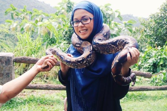 A Trip to the Animal Farm